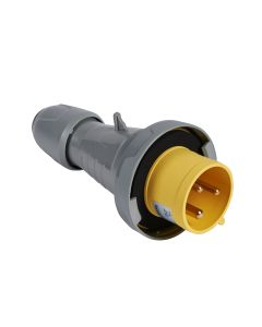 MCHO IND VTE 110V 32A 2P+T   IP66 55543104 LEGRAND